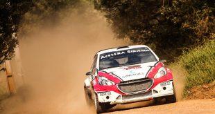 O Peugeot 208 Maxi Rally da equipe Acelera Siriema se deslocando na direção da câmera, deixando um rastro de poeira por trás. A imagem está levemente inclinada para a esquerda