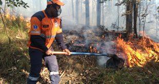 agente da Defesa Civil de Santana de Parnaíba em combatendo um foco de incêndio