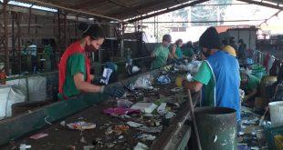 Barueri faz pesquisa on-line sobre educação ambiental